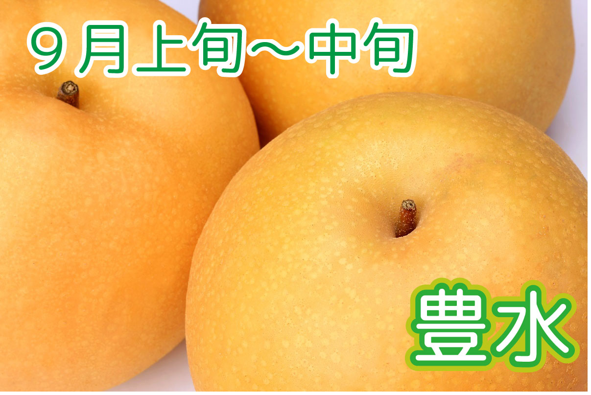 nashi_002