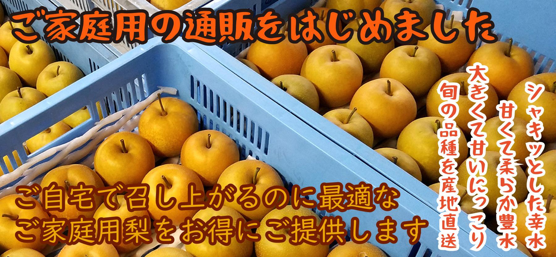 梨のご家庭用、お得です